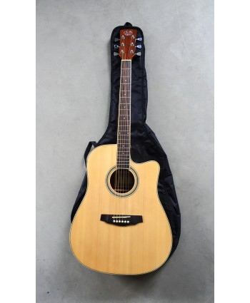 J&D ACOUSTIC GUITAR DC15NL (NO BAG)